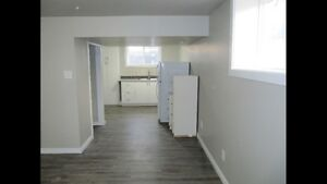 Bright, Newly Renovated Studio Basement Suite