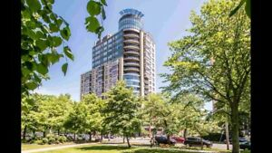 Downtown Trillium one bedroom luxury condo for rent