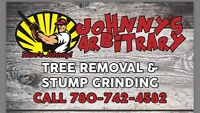 Tree service and stump removal