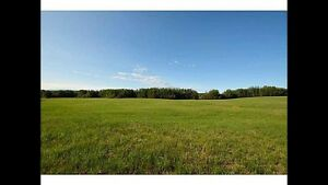 +/- 8 Acres Pasture for Rent