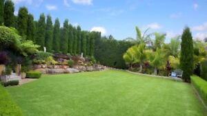 Landscaping North Ryde Ryde Area Preview