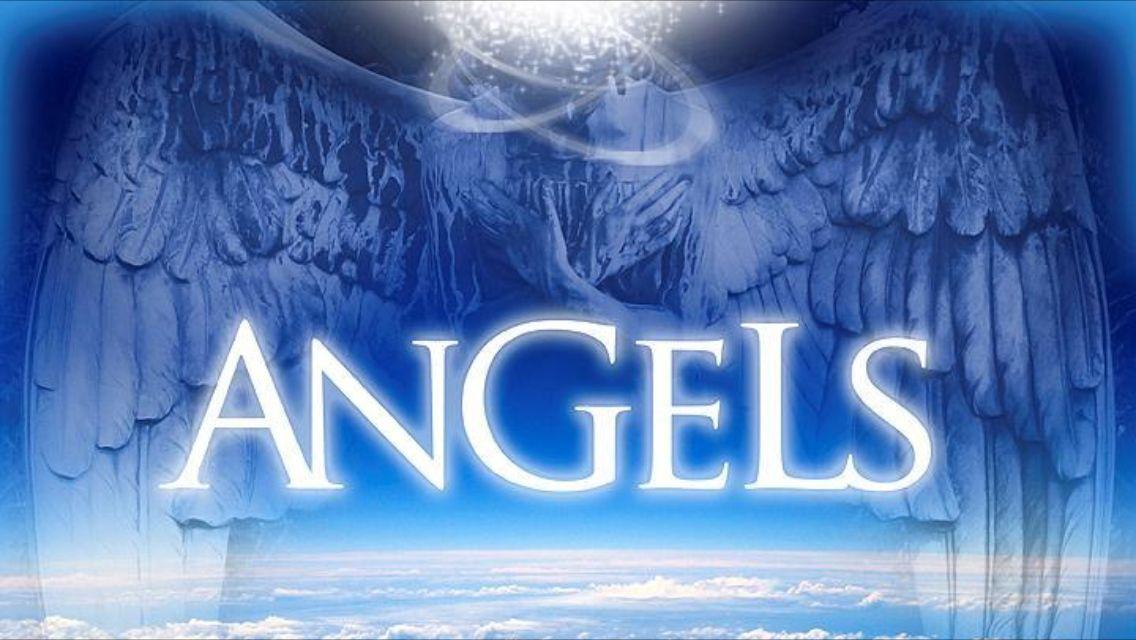 Angels-Logistik
