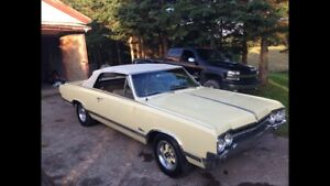 Price lowered  to sell 65 Cutlass