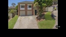 3 beddy home for rent $430/week Nerang Gold Coast West Preview