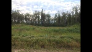 Wandering River Commercial Lot