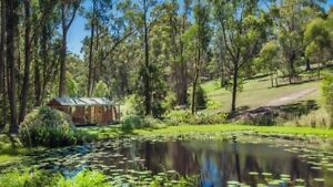 Eco Cabin by the lake Gosford Gosford Area Preview