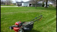 Looking to cut grass on sundays
