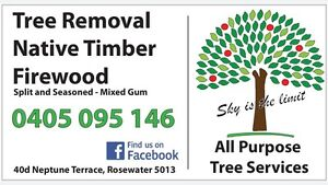 All Purpose Tree Services Tree removal, Tree trimming, Palm tree Rosewater Port Adelaide Area Preview