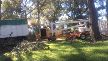 Tree Removal and cherry picker services