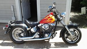 HD softail