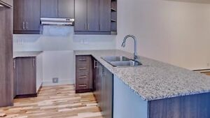 Beautiful apartment looking for a roommate.