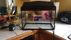 5 Gallon Tank with Hood and built in light and mini heater
