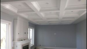 Crown Moulding / Waffle Ceilings / Wainscoting