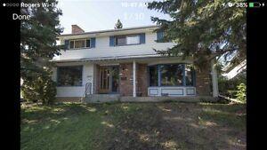 Rooms For Rent Special Deal For December! Edmonton Edmonton Area image 1
