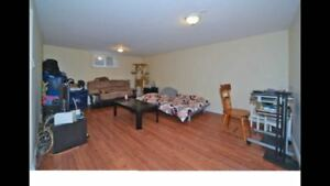 Two Bedroom Basement for Rent