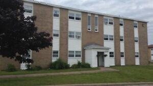 Fully Furnished 2 BR Apt ( Secure 12 Unit Building)