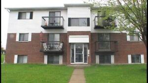 6 logements à vendre