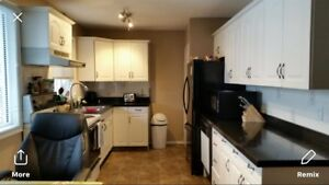 Clean Quiet Cozy furnished room temp or long term