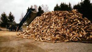 Seasoned Hardwood Firewood  / free bag kindling