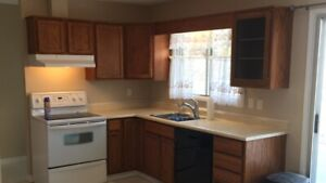 Spruce Grove 5 bdrm house for rent