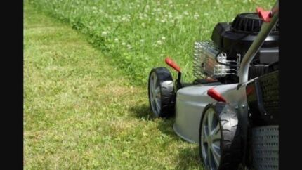 Lawn Mowing $30