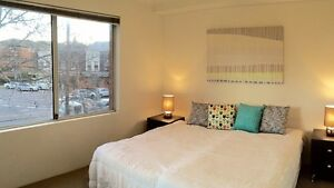 Furnished one bedroom unit next to UNSW Kensington Kingsford Kingsford Eastern Suburbs Preview