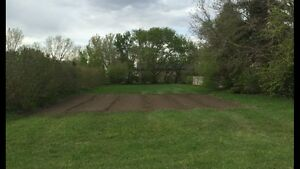 Bare lot for sale in Monarch, AB.