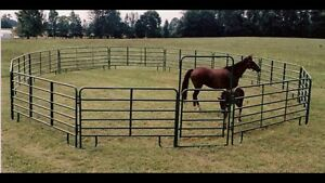 *** Looking for Round Pen***
