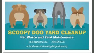 Scoopy Doo Yard Cleanup
