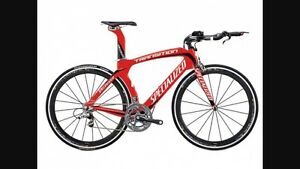 Specialized Transition Expert large