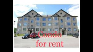 Condo for rent near Petrie's island Orleans/ apartment