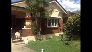 STRATHFIELD - Large double room available $220. Strathfield Strathfield Area Preview