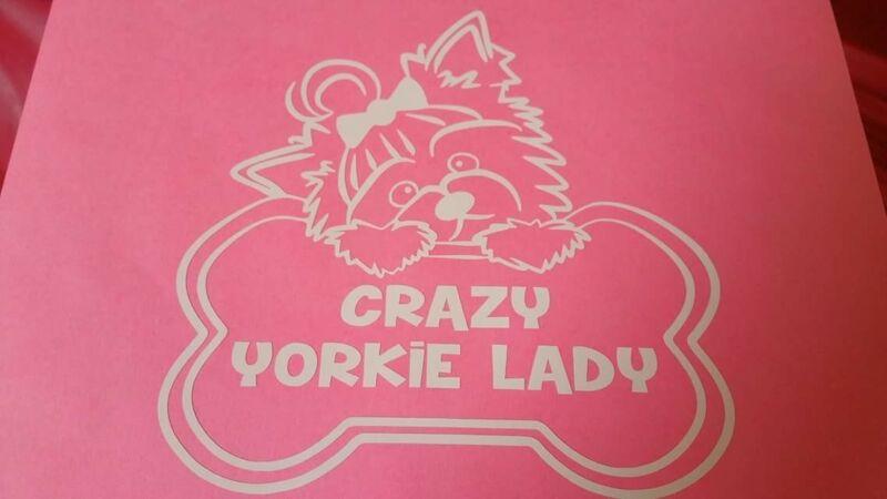 Crazy Yorkie Lady Window Decal