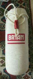 Bryan boxing punch bag