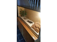 vivarium 5ft with cabinet heat pad and accessories
