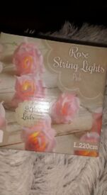 pretty rose fairy lights