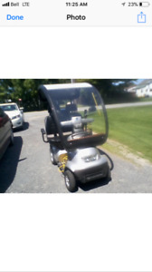 2 Passenger Electric Scooter