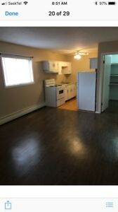 1 bedroom large clean apartment style condo