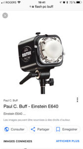 Ensemble 2 flash studio Paul PC Buff