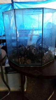 Fish tank -glass, octogon with accessoriess Barmera Berri Area Preview
