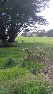 ApproxOne acre Close to Great Surfing Beaches and Awesome Fishing Hobart CBD Hobart City Preview