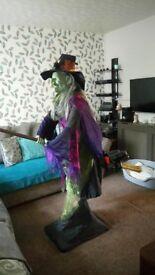 Wanda Witch