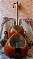 Persian Classic Music Lessons and Instruments