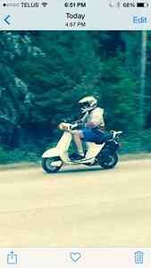 Cool 1983 80 cc Honda Aero