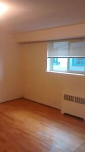 Large room for rent (must love cats)