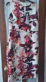 COAST occasion dress size 12 BNWT