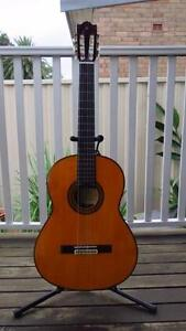 Yamaha G245Sii Classical Guitar Solid Spruce Top Ashfield Ashfield Area Preview