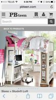 Sleep & Study Loft Bed