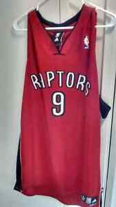 Toronto Raptors #9 Parker jersey Kitchener / Waterloo Kitchener Area image 1