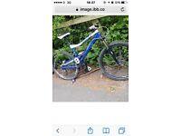 Mountain bike - STOLEN - from Home Bargain